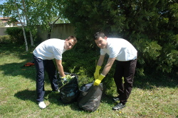 Green Waste and Rubbish Removal in Warrington